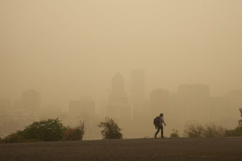 Link between air pollution and neurological disorders