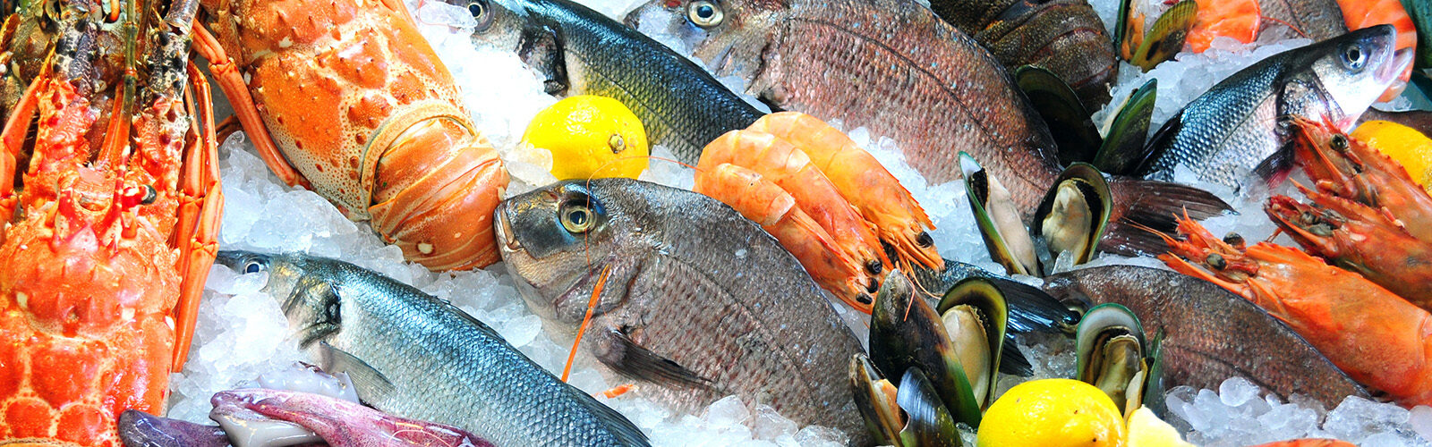 Aquatic foods a 'win-win' for people and planet