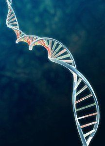 project 3_dna