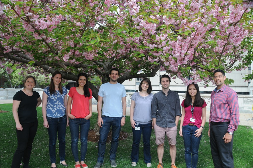 Lab Photo May 2015.