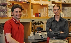 Human Microbiome Project researchers Nicola Segata (l), Curtis Huttenhower