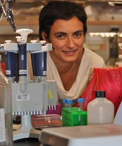 Flaminia Catteruccia, associate professor of immunology and infectious diseases