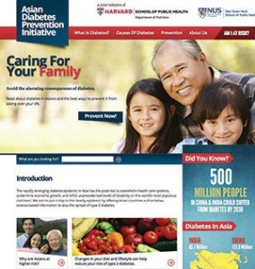 Asian Diabetes Prevention Initiative website