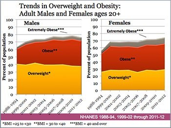 Trends in Overweight and Obesity-350