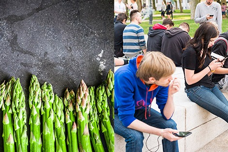 Can't smell asparagus pee? Is Pokémon GO good exercise?