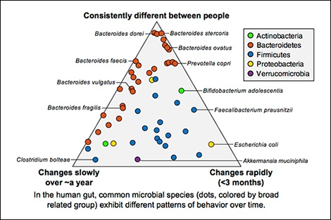 Thousands of new microbial communities identified in human body