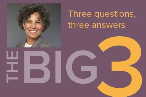 "Poster of Mary Bassett with words ""the big three"""