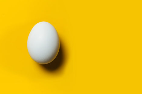 Egg on a yellow background