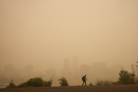 Significant link found between air pollution and neurological disorders