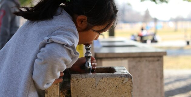 A young girl drinks from a water fountain in a park