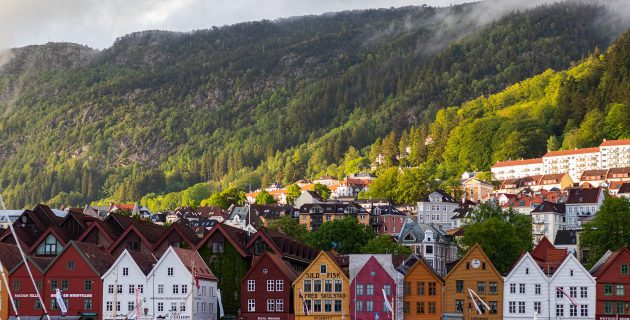 Roe of houses in front of large forest
