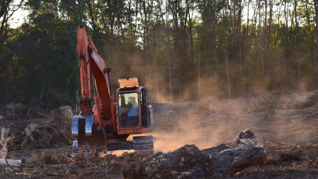 Machinery tearing down trees
