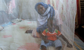 World Malaria Day: Sustaining Success and Saving Lives