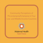 Community Perceptions of Pre-eclampsia/Eclampsia in Four Low- and Middle-Income Countries