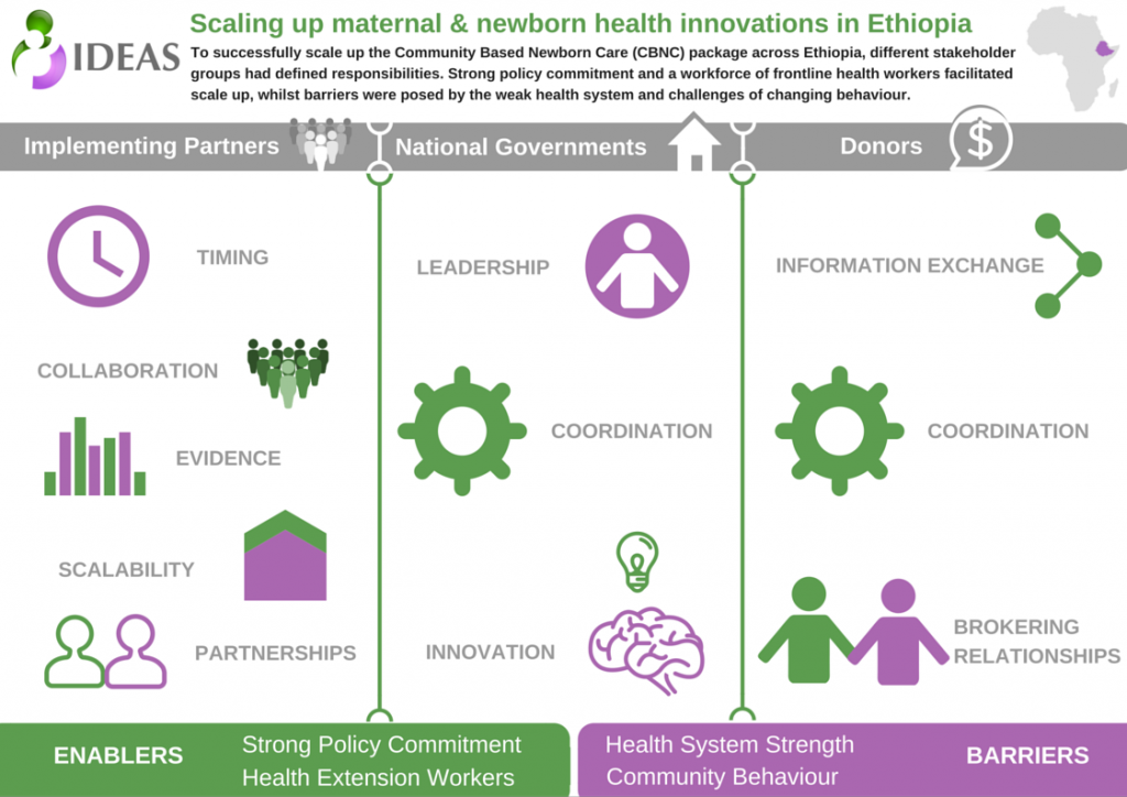 Scaling Up Innovations in Maternal and Newborn Health: 5 Lessons Learned