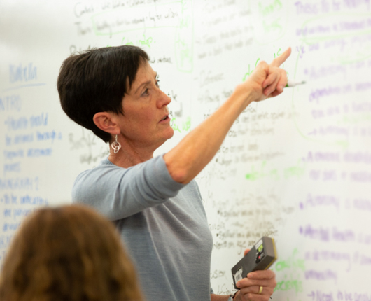 Photo of Eve Wittenberg pointing to whiteboard