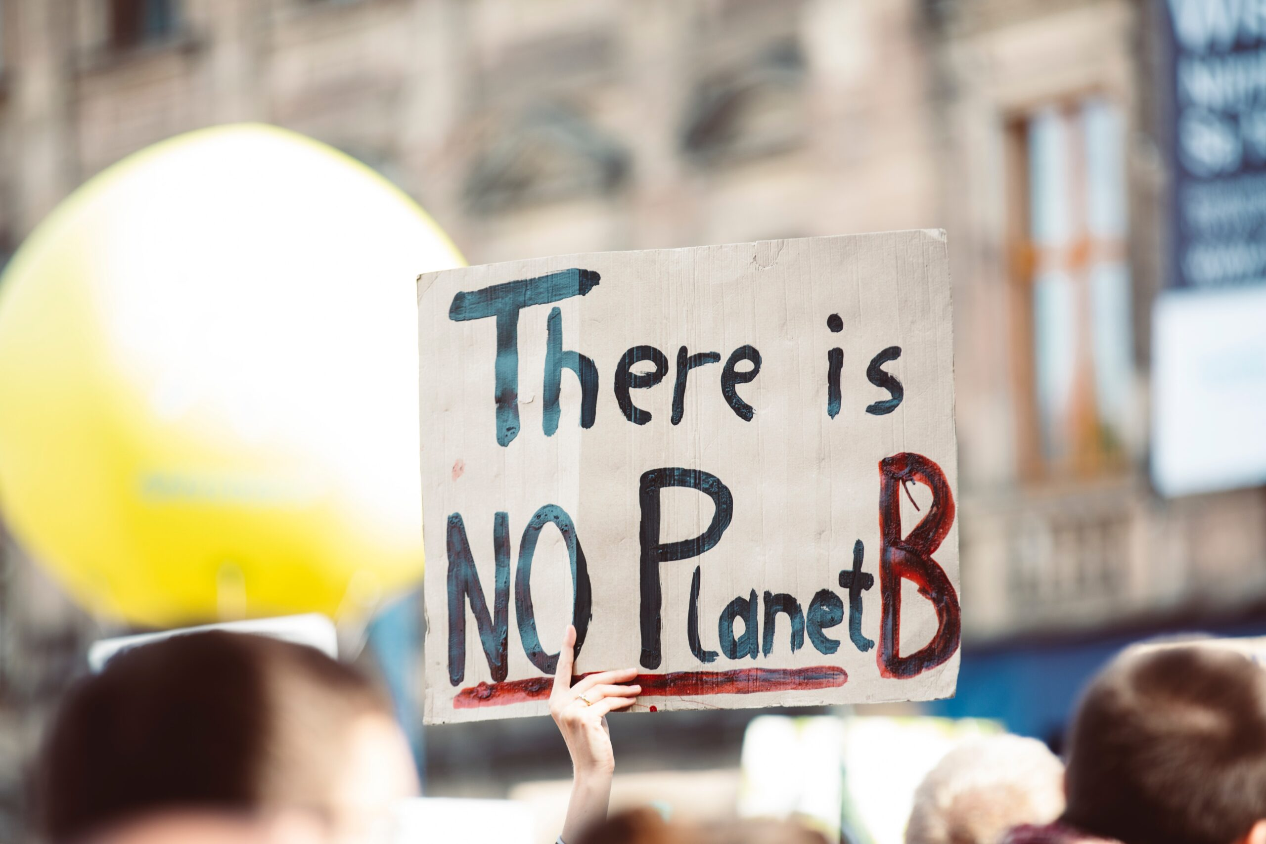 """Image of person holding sign that reads, """"There is no Planet B"""""""