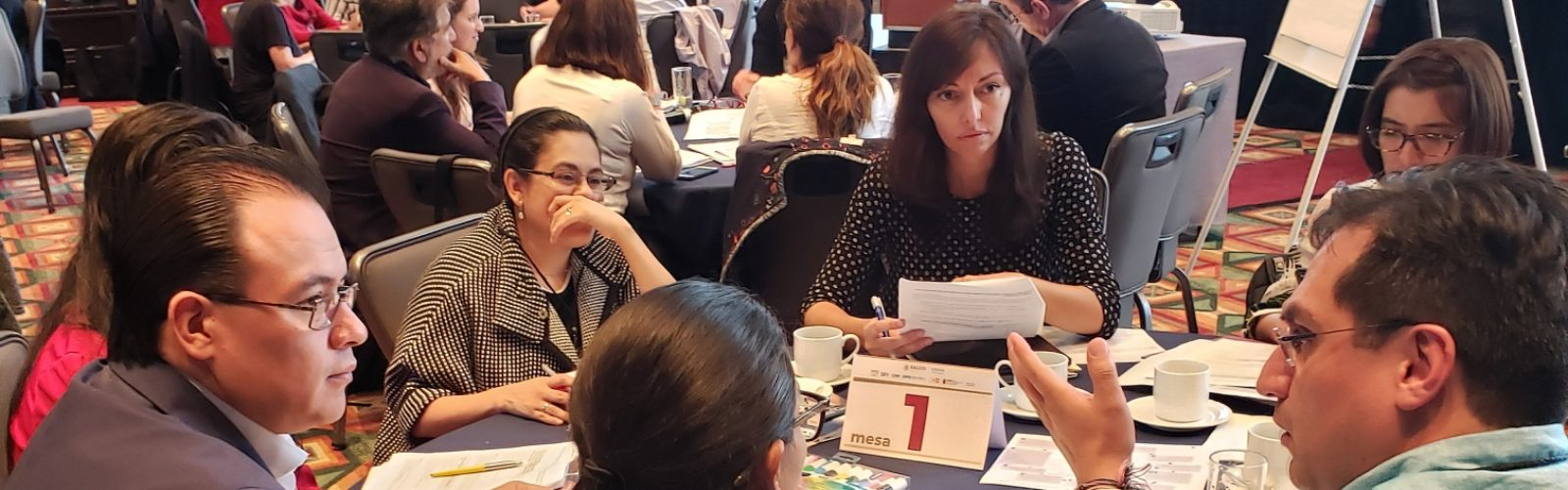 Breakout group discusses EPMM key themes during the Mexico National Dialogue, July 2019