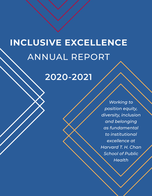 Report cover for Inclusive Excellence