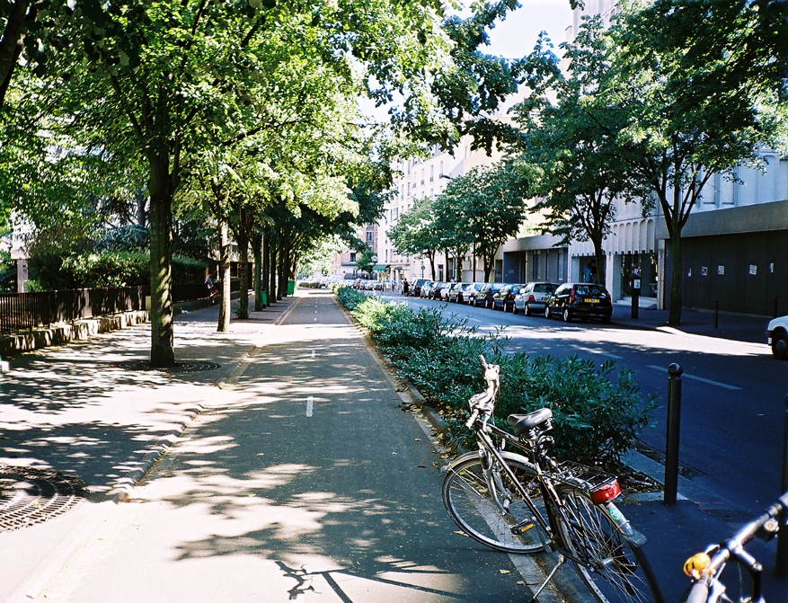 two-way cycle track beside a sidewalk with mature trees and bushes as a barrier between the cycle tracks and the street