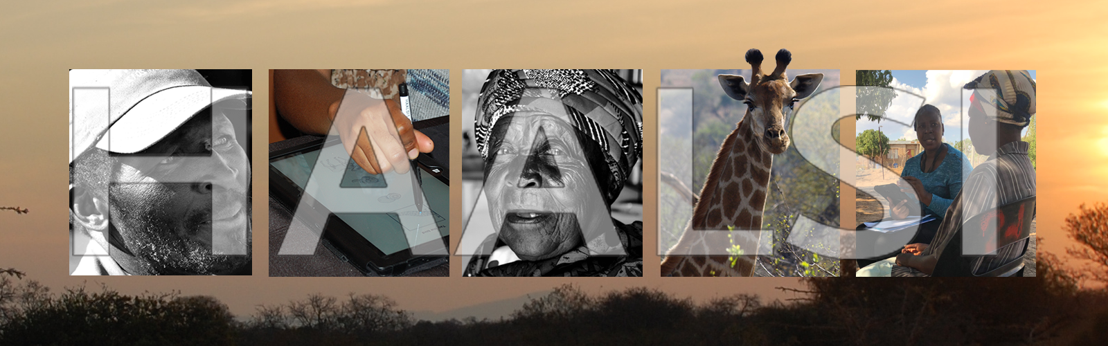 Health and Aging in Africa: A Longitudinal Study of an INDEPTH Community in South Africa