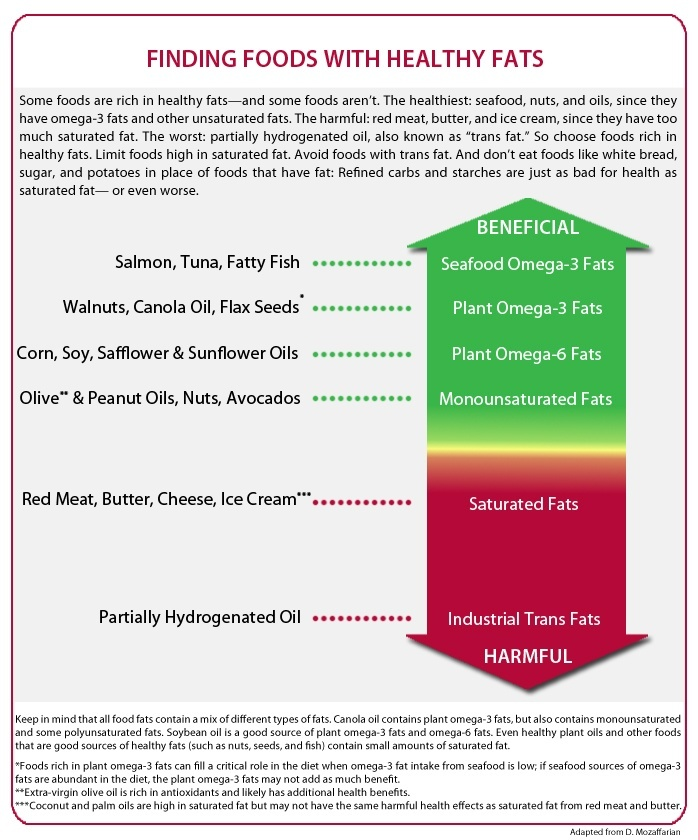 Types Of Fat The Nutrition Source Harvard Th Chan School Of