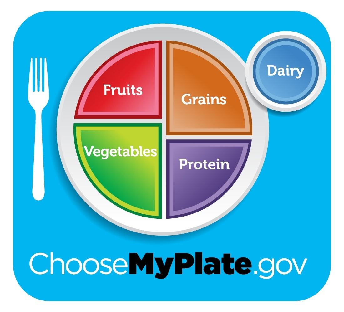 Image result for usda food plate