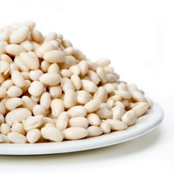 A plate piled with Great Northern beans