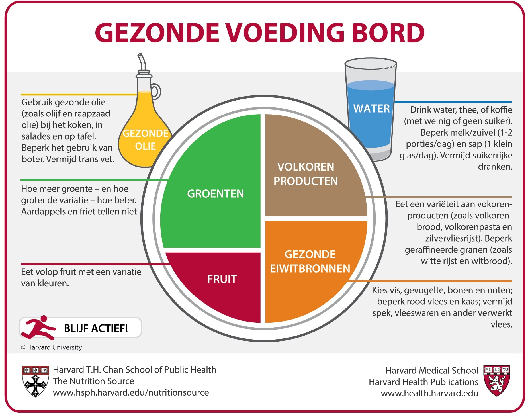 Beroemd Gezonde Voeding Bord (Dutch) | The Nutrition Source | Harvard T.H.  @VE74