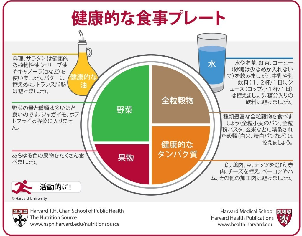 Japanese Healthy Eating Plate