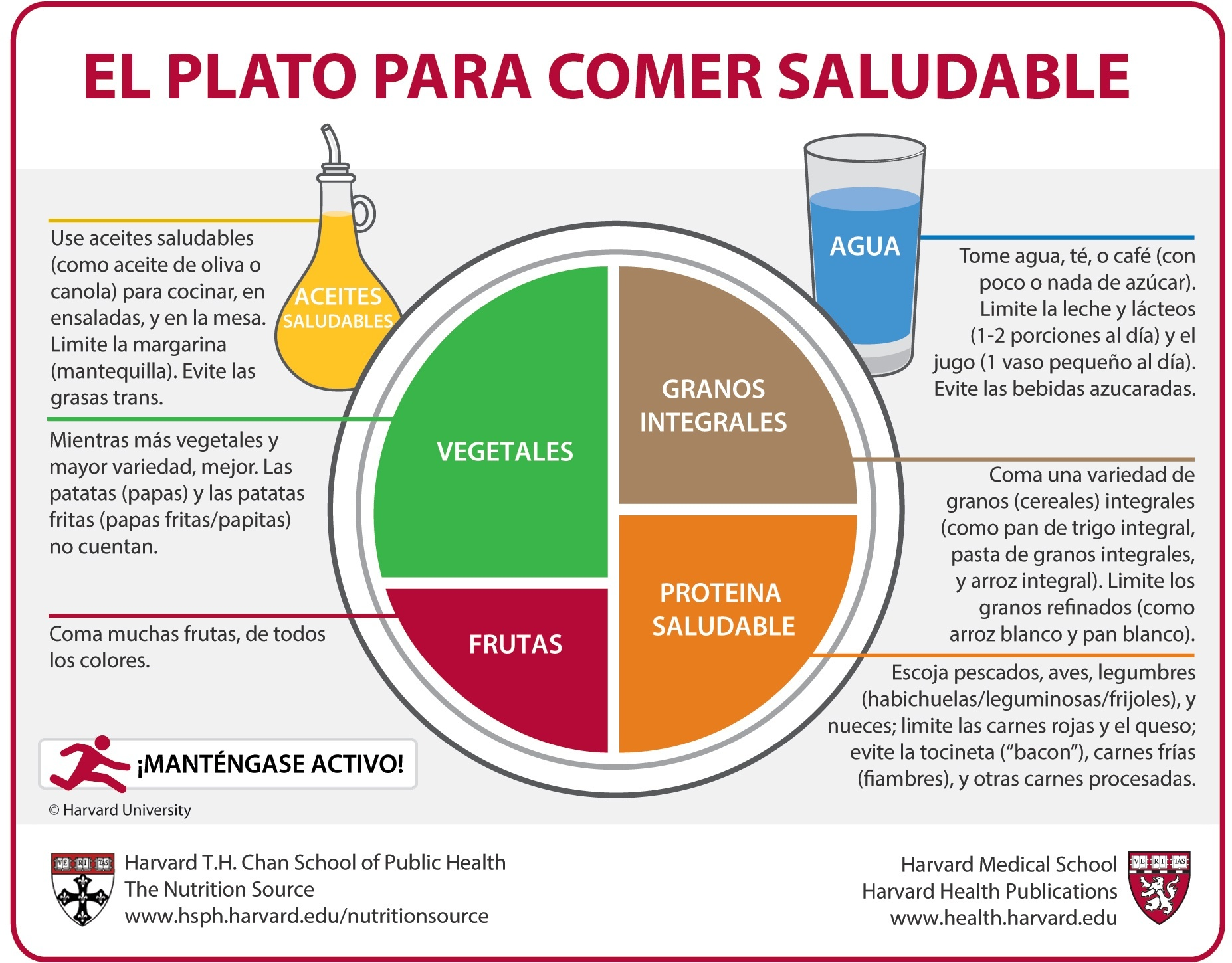 El Plato Para Comer Saludable Spanish The Nutrition
