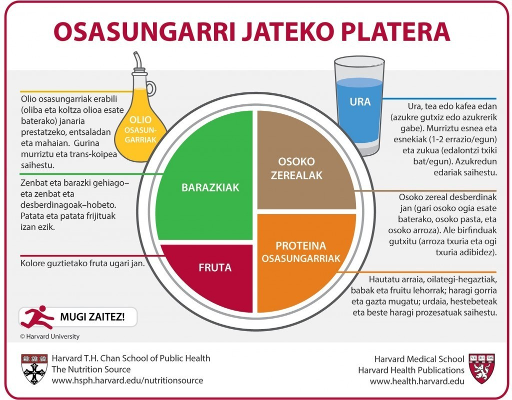 Basque Healthy Eating Plate Translation