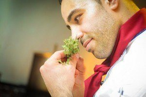 chef_smelling_herbs
