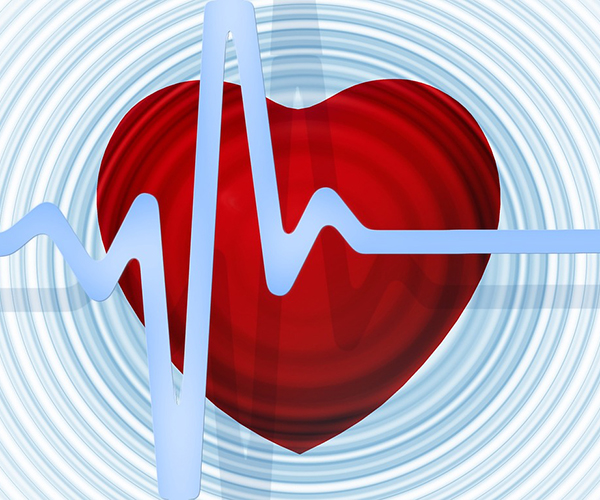 Heart Beat, Cardiovascular Disease