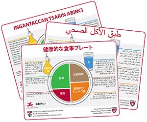 Three examples of translations of Harvard's Healthy Eating Plate