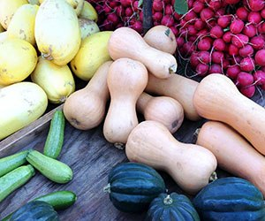 A variety of carbohydrates, such as butternut squash, spaghetti squash, acorn squash, zucchini, and radishes