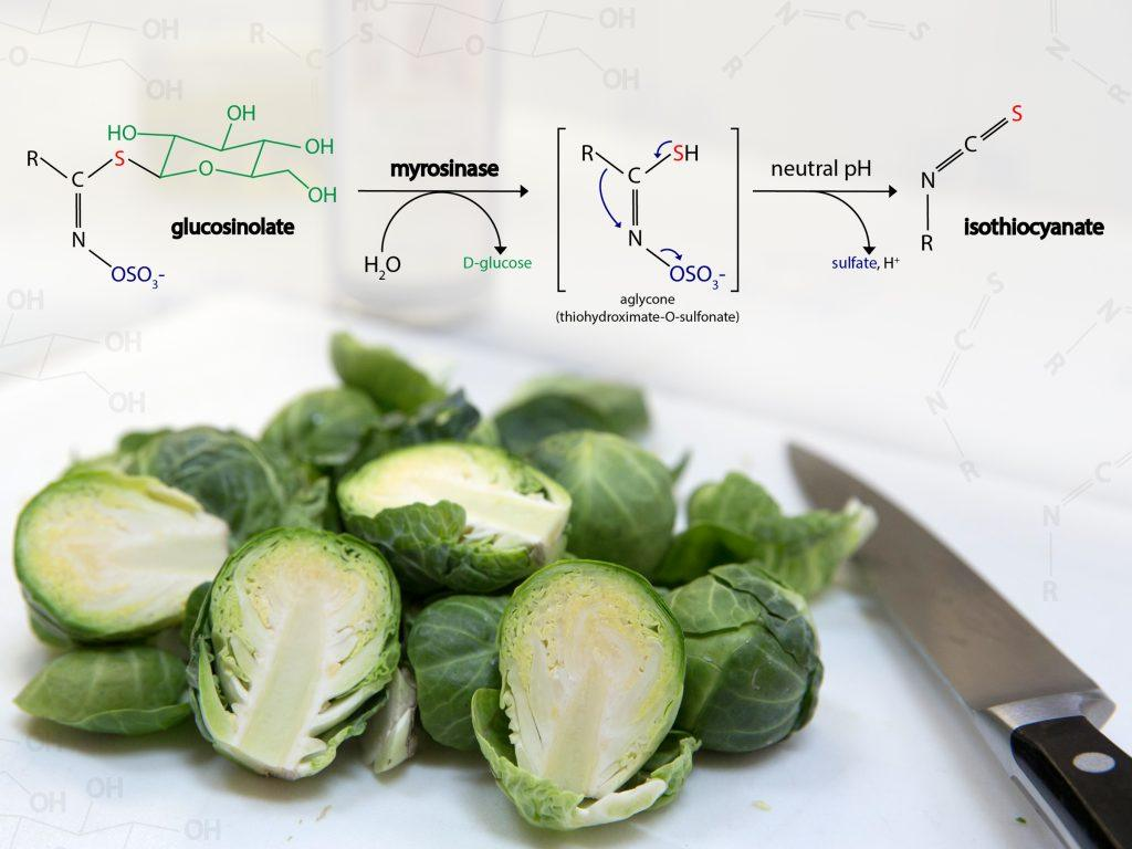 Chemical conversion of glucosinolate to isothiocyanate in Brussels sprouts