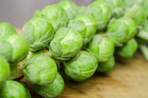 Brussels Sprouts on Stem