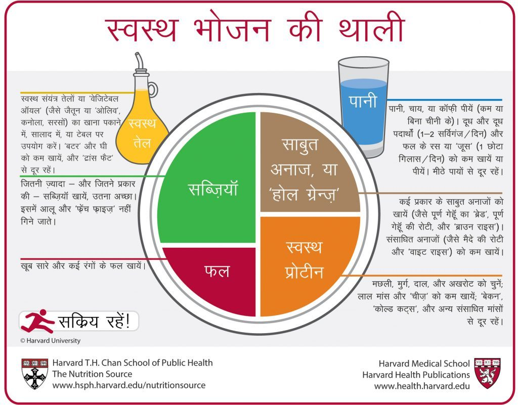 Healthy Eating Plate Translation Hindi
