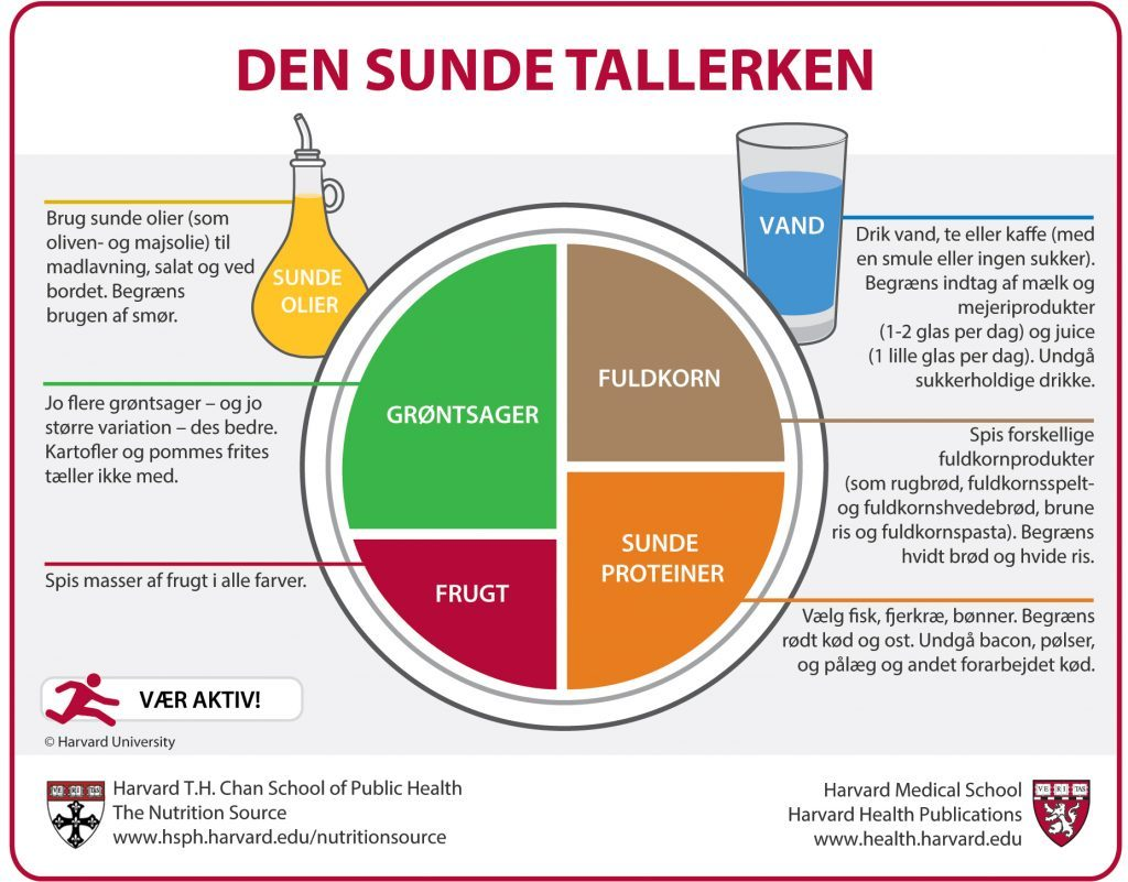 Den Sunde Tallerken (The Healthy Eating Plate, Danish Translation)