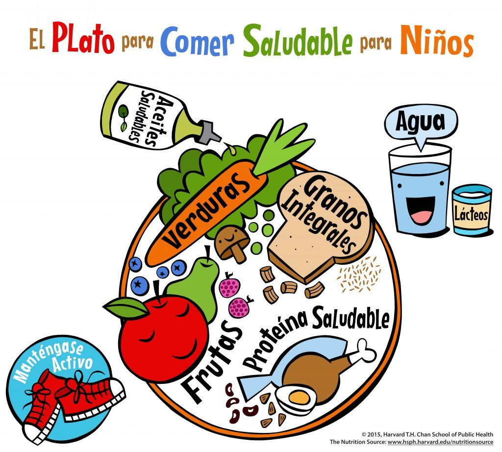 El Plato Para Comer Saludable Para Niños The Nutrition Source
