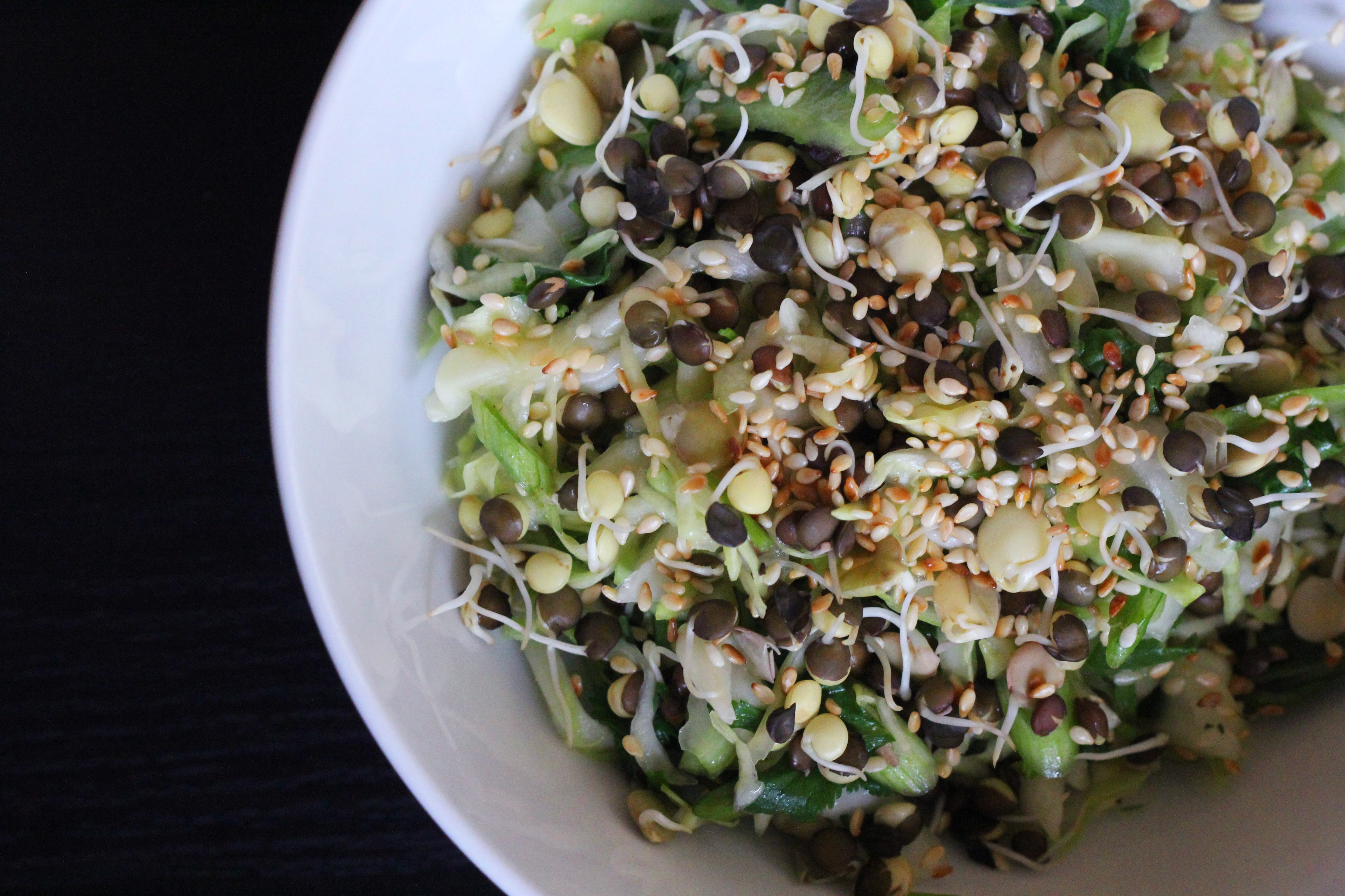 Slaw made with cabbage, sprouted lentils, celery, and a tangy dressing