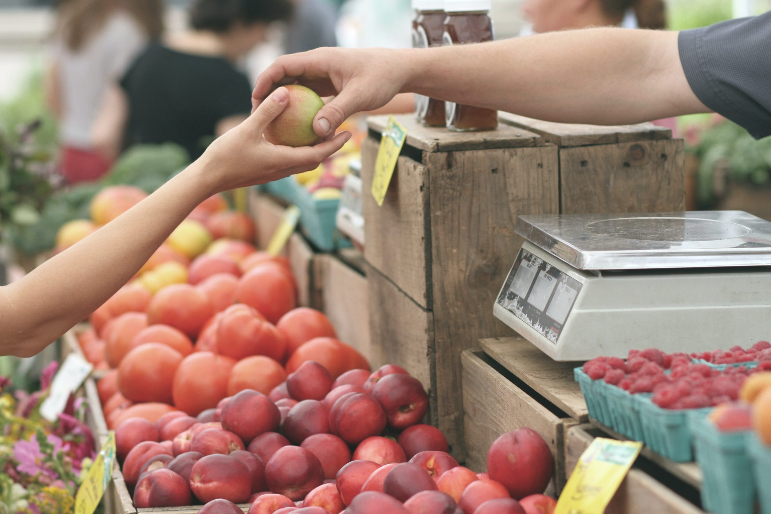 handing off an apple at the farmers market