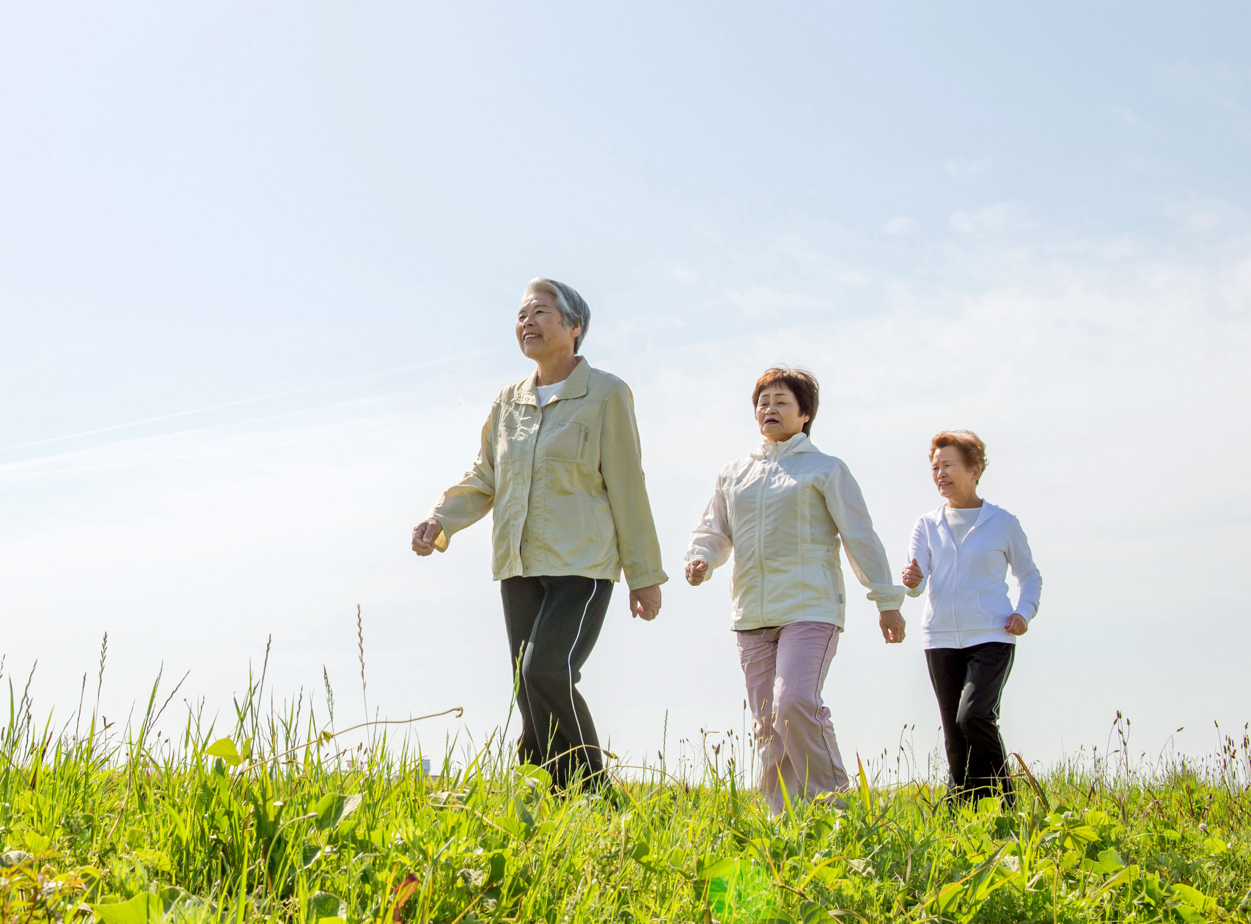 three women, older in age, walking up a grassy hill with blue sky behind them