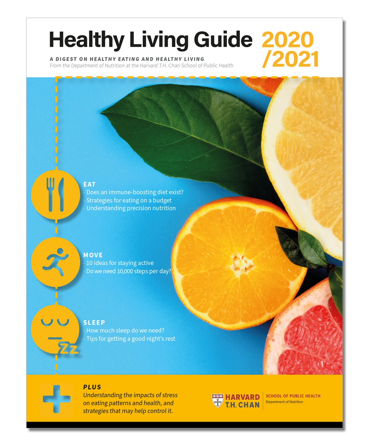 Cover image of the Healthy Living Guide downloadable PDF