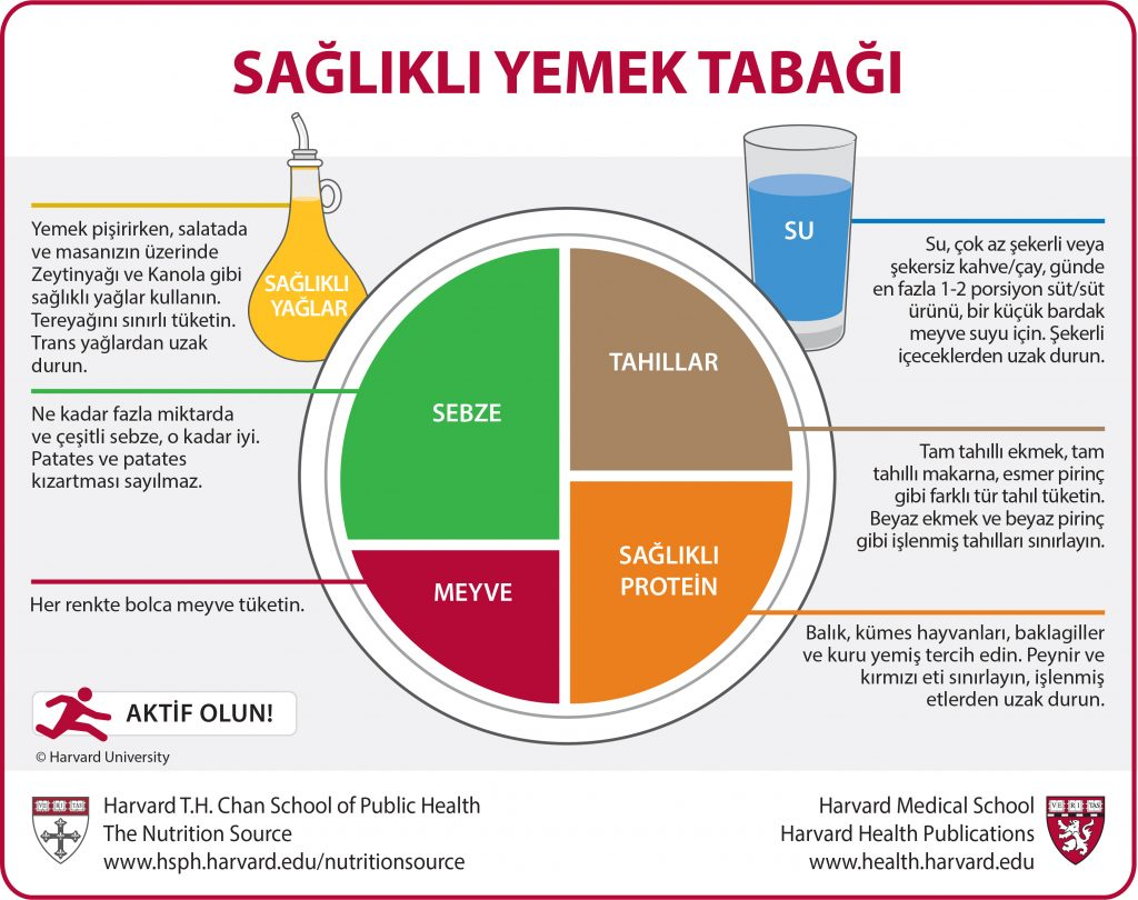 Turkish Translation of the Healthy Eating Plate