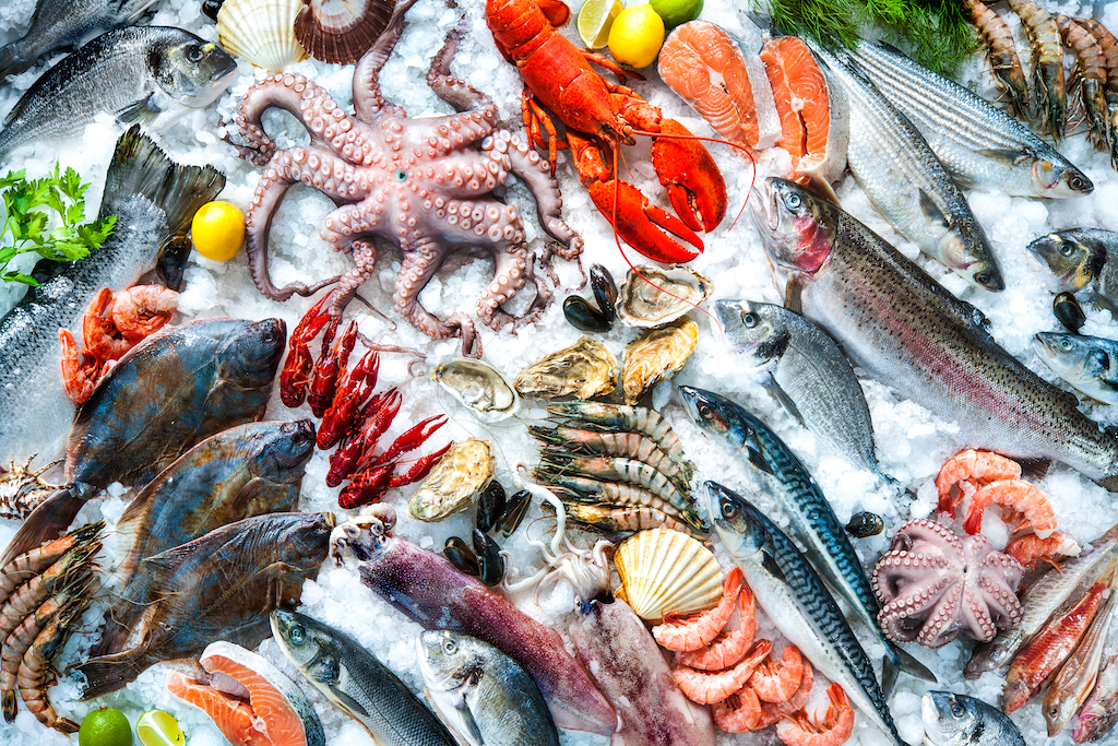 A variety of aquatic foods chilling on ice including, octopus, fish, shrimp, lobsters, mussels, scallops, oysters, and more