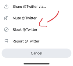 "Click ""Block"" to block in the popup menu that twitter account"