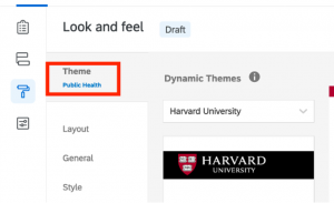 Screenshot of the Qualtrics user interface, showing where the selected theme for the survey is displayed