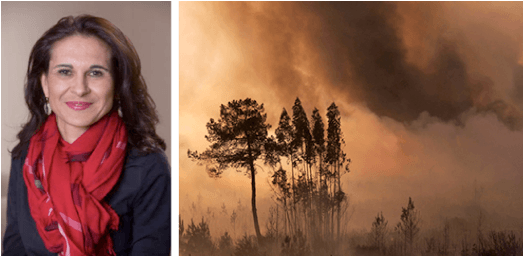 'Smoke Waves': Assessing the Public Health Threat from Wildfires